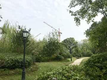 温莎公园实景图