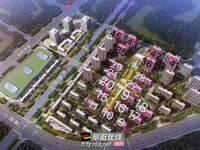 出售红星 天玺湾3室2厅2卫114平米97万住宅